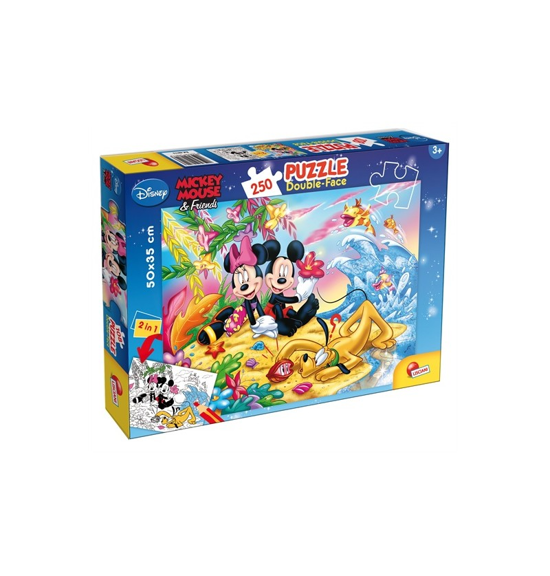 PUZZLE DF PLUS 250 MICKEY...